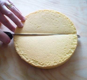 Come modellare il pan di spagna